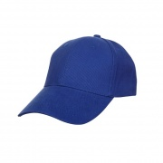 CP01 - Brush Cap