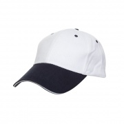 CP04 - Brush Cap